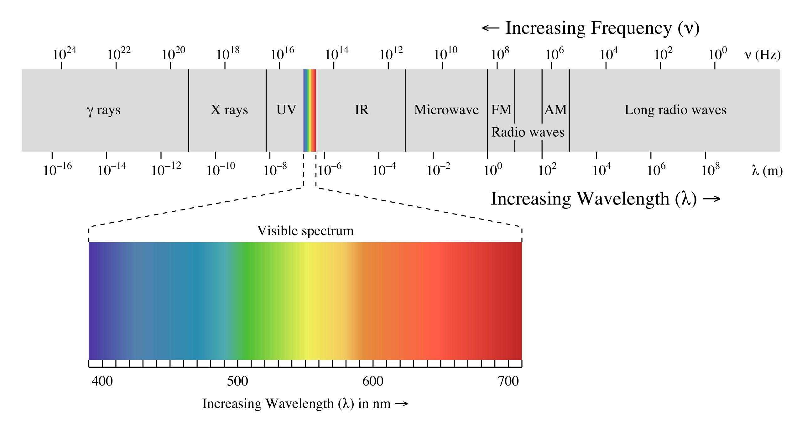 Light wavelengths spectrum
